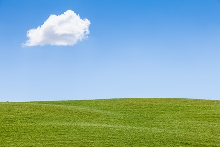 Green field under a blue sky in Val Orcia, Tuscany region, Italy photo