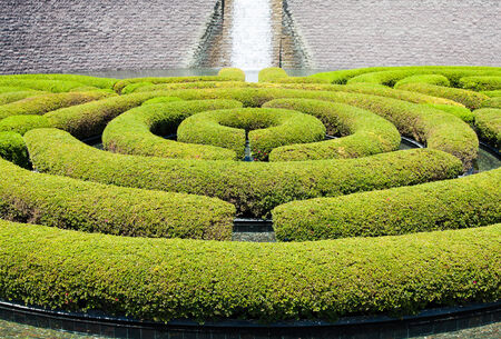 Wonderful garden maze during a sunny day photo