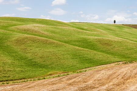 san quirico dorcia: San Quirico dOrcia, Tuscany, Italy. Classic example of local panorama