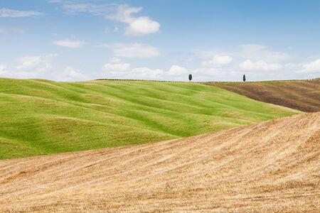 san quirico: San Quirico dOrcia, Tuscany, Italy. Classic example of local panorama