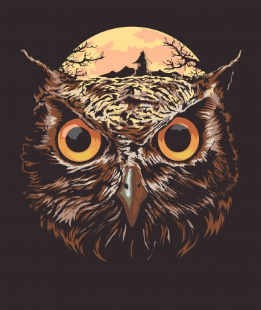 bird of prey: Illustration of owl head Illustration