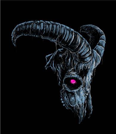 cabra: Ilustración del vector del cráneo de la cabra