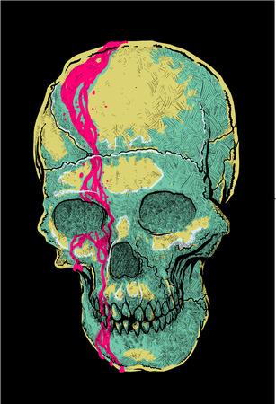 calavera: Ilustración vectorial de cráneo