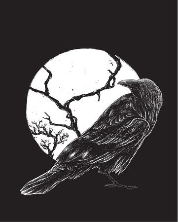 Vector illustration of raven Illusztráció
