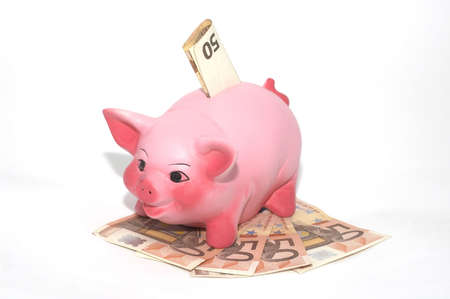 piggy bank and euro cash Stock Photo - 895326