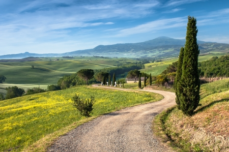 paisaje rural: Paisaje en Toscana Foto de archivo