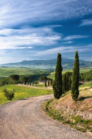 campi�a: Paisaje en Toscana Foto de archivo