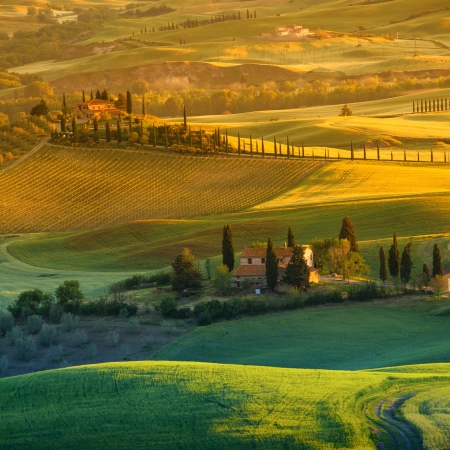 farmlands: Landscape in Tuscany