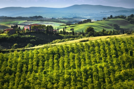 agriturismo: Landscape in Tuscany