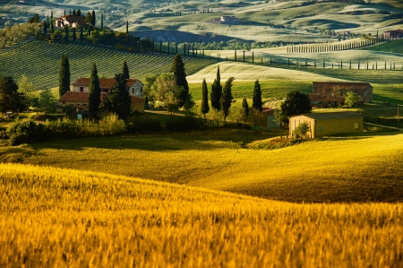 Landscape in Tuscany Stock Photo - 19551002