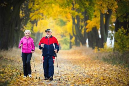 senior paar maken van nordic walking in het park Stockfoto
