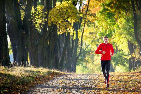 young man running in the park Standard-Bild