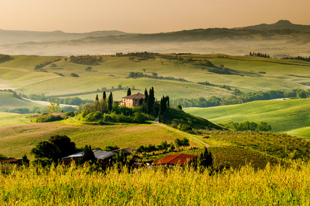Landschap in Toscane Stockfoto - 38744708