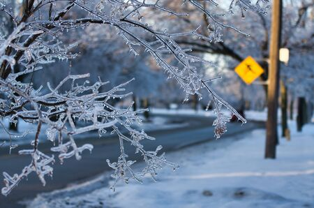 Esta foto de ramas congeladas con un letrero de cruce en el fondo tomada después de la tormenta de hielo de 2013 en Toronto, que resultó en un corte de energía importante que duró varios días. Foto de archivo