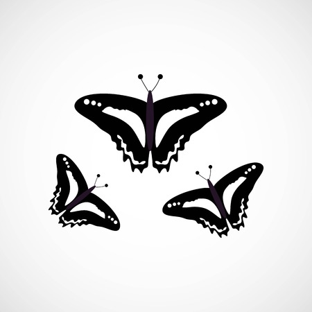 Simple Black and White Butterfly, Vector, Illustration, Eps