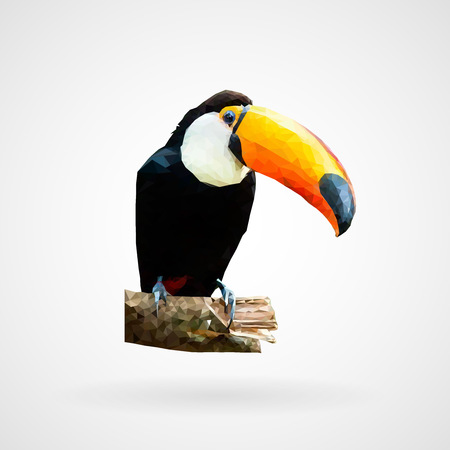 Colorful polygonal toucan bird vector illustration.