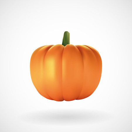 Realistic pumpkin with white background, vector, illustration, eps file
