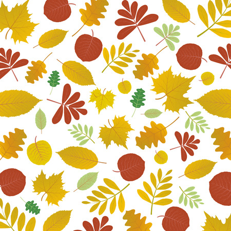 Abstract autumn floral pattern background, vector, illustration, eps file