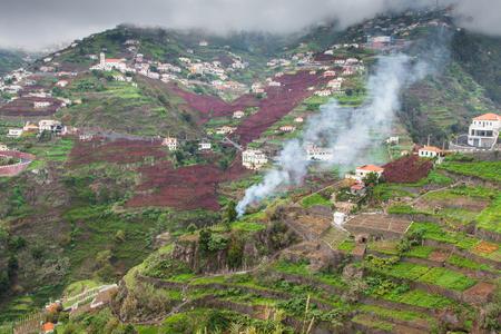 Village on the south coast of Madeira island, Câmara de Lobos - Portugal photo