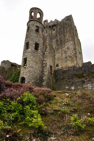 Irish castle of Blarney , famous for the stone of eloquence. Ireland