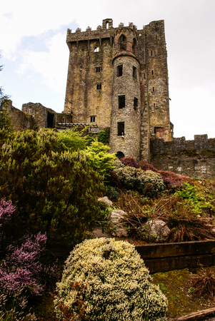 castle rock: Irish castle of Blarney , famous for the stone of eloquence. Ireland