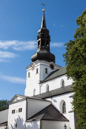 nevsky: Alexander Nevsky Cathedral. Tallinn, Estonia