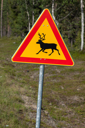 Beautiful scenic road in Norway. Typical warning road sign photo