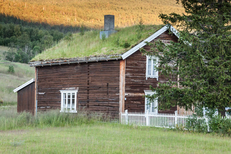 insulate: Norwegian typical grass roof country house