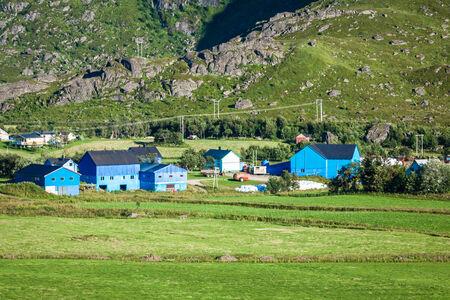 Traditional norwegian colorful houses ,Lofoten islands, Norway photo