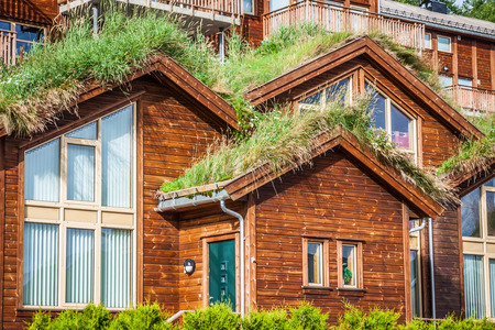 Typical norwegian house with grass on the roof photo