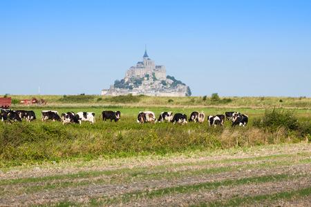 mont saint michel: Mont saint Michel - Normandy - France