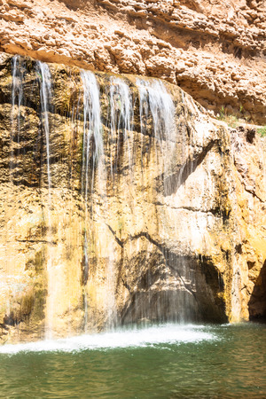 mountain oasis: Waterfall in mountain oasis Chebika, Tunisia, Africa