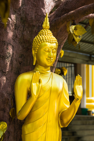 Buddha statue in Tiger temple with golden leaves, Krabi, Thailand photo
