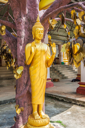 transcendental: Buddha statue in Tiger temple with golden leaves, Krabi, Thailand