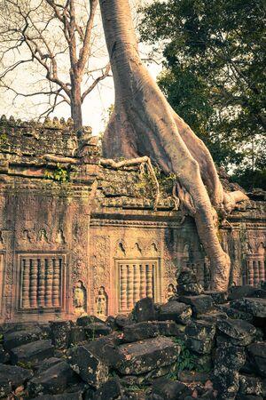 khan: Preah Khan temple, Angkor area, Siem Reap, Cambodia
