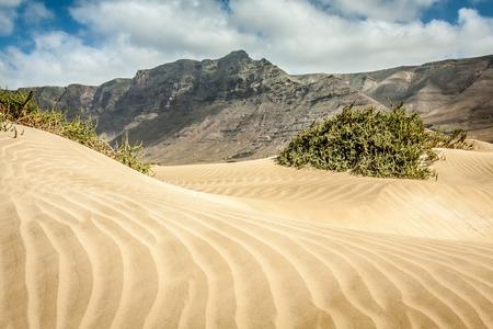 kiting: Sand dunes on Famara beach, Lanzarote