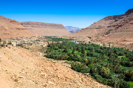 northern african: Wide view of cultivated fields and palms in Errachidia Morocco North Africa Africa, deep blue sky