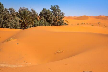 erg chebbi: The seas of dunes of Erg Chebbi near Merzouga in southeastern Morocco. Stock Photo