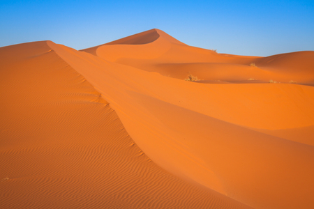 erg: The seas of dunes of Erg Chebbi near Merzouga in southeastern Morocco. Stock Photo