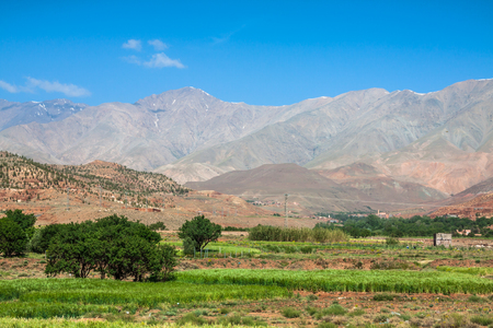 fertile land: Morocco, High Atlas Mountains, Agricultural land on the fertile foothills near Ansi. Stock Photo