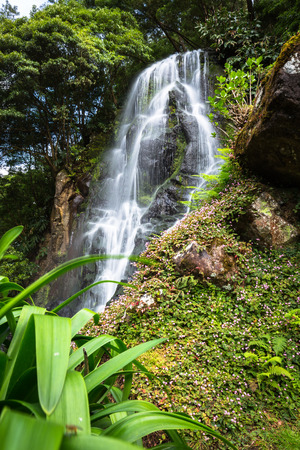 moistness: Famous cascade at Sao Miguel Island,Azores,Portugal