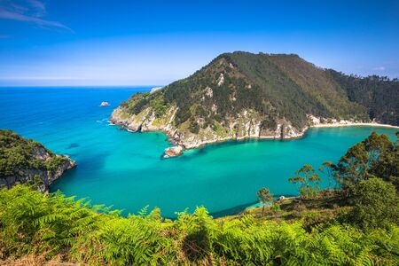 emerald: Lower Estuary from the Mirador Tina Minor. Municipality of Val de San Vicente, Cantabria.