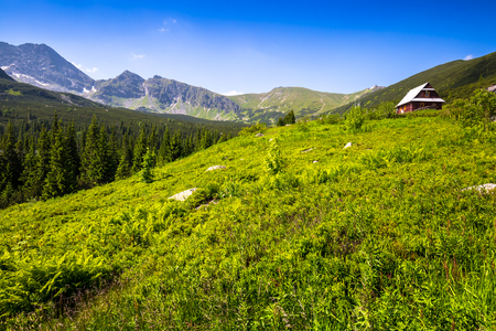 best shelter: Hala Gasienicowa(Valey Gasienicowa) in Tatra mountains in Zakopane,Poland Stock Photo