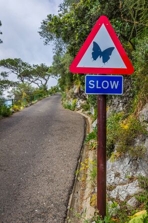 Road sign ordering slowing
