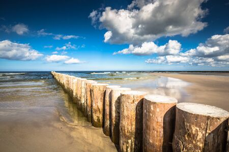 bather: Wooden breakwaters on sandy Leba beach in late afternoon, Baltic Sea, Poland Stock Photo