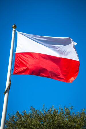 polish flag: Polish flag on a pole against blue sky
