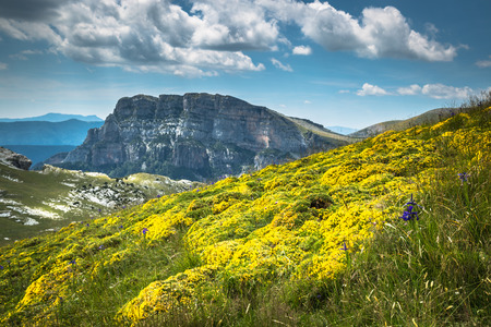 huesca: Pyrenees Mountains landscape - Anisclo Canyon in summer. Huesca,Spain Stock Photo