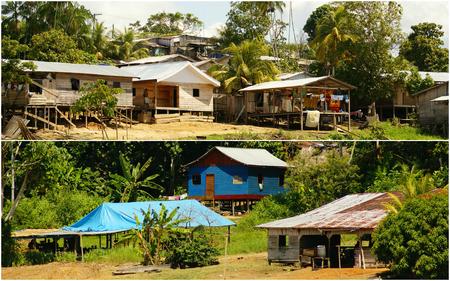 Collage of amazonia, Peru (my photos)