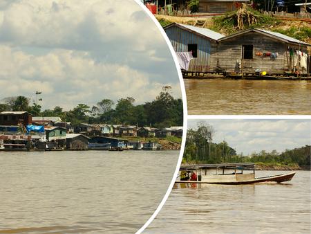 amazonia: Collage of amazonia, Peru (my photos)