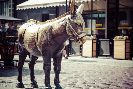 The statue of a donkey Old Town Square in Torun.